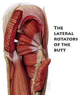 lateral-rotators-1